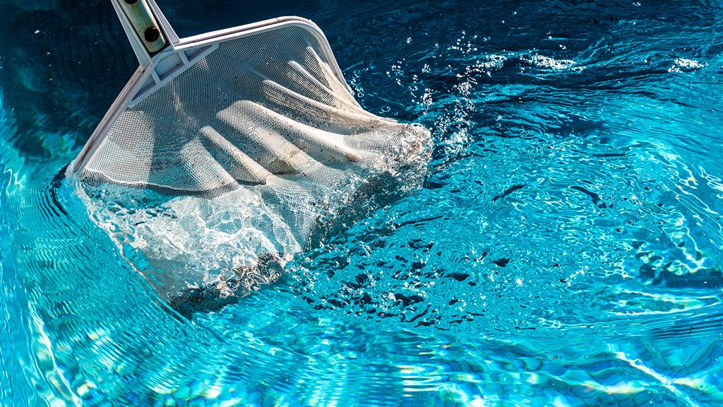 Épuisette piscine