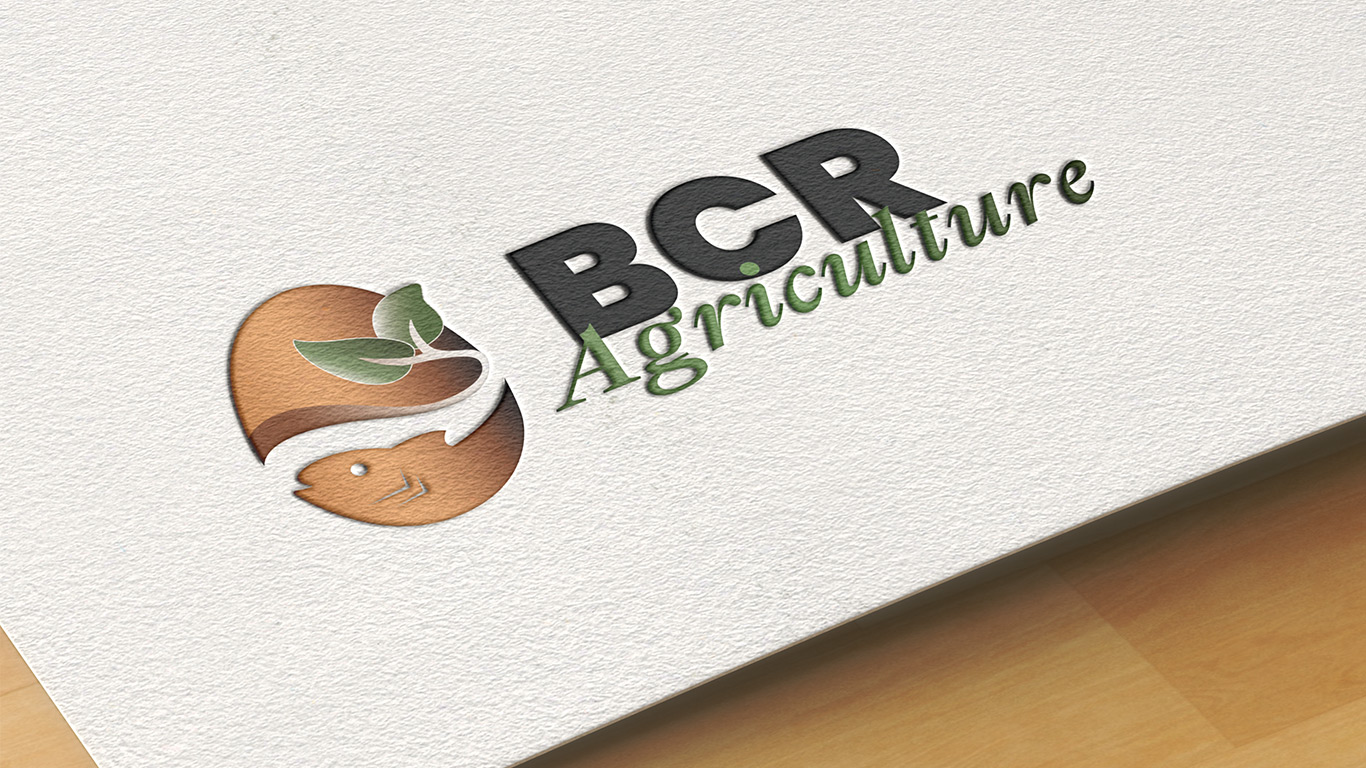 Projet BCR Agriculture