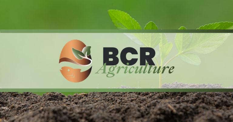 Projet BCR Agriculture - https://jenlidesign.com